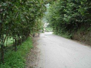 Artvin Aşağı Şahinler Köyü