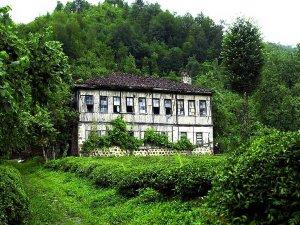 Artvin Kavak Köyü