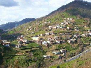 Artvin Çavuşlu Köyü