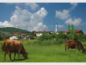 Kastamonu Akılçalman Köyü
