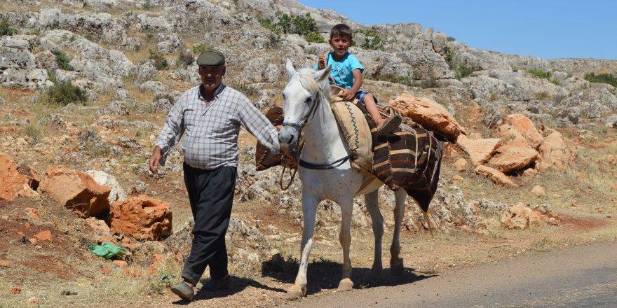 Adıyaman'ın Besni İlçesi Suvarlı Belde Halkı Eşek Ve Katır Sırtında Su Taşıyor
