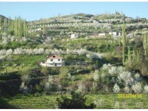 Manisa Bahçecik Köyü