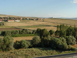 Çorum-Sungurlu Gökçam Köyü