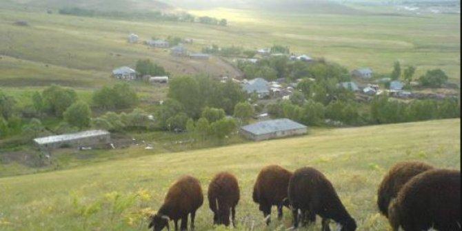 Ağrı Eleşkirt Öztoprak Köyü