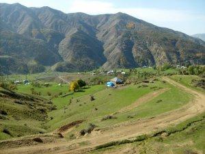 Muş Ağıllı Köyü