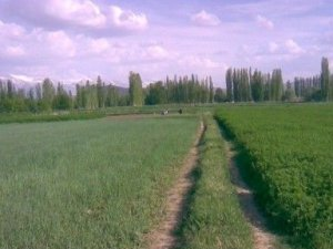Niğde Aşlama Köyü