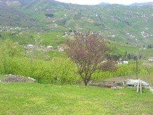 Trabzon Geçit Köyü
