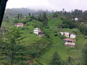 Rize Yeşildere Köyü