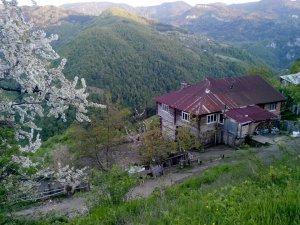 Kastamonu Sulusökü Köyü