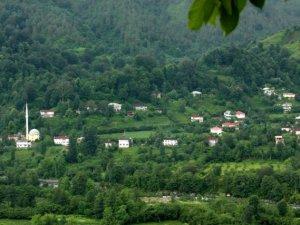 Artvin Konaklı Köyü