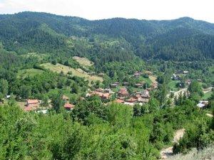 Muş Ulukaya Köyü