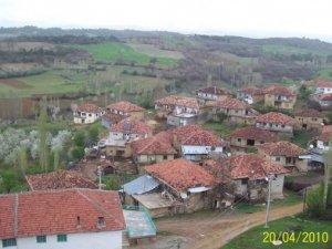 Uşak Düzlüce Köyü