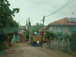 Van Altıntaş Köyü