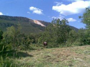 Zonguldak Aşağıçayır Köyü