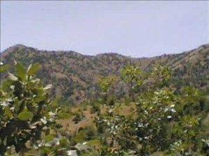 Şırnak Balveren Köyü