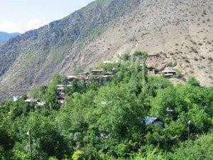 Artvin Ballıüzüm Köyü
