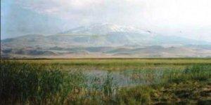 Ağrı Patnos Yeşilyurt Köyü