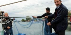 Türk Denizlerinde Yunus Tehdidi Artıyor
