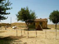 Kilis Havuzluçam Köyü