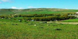 Ağrı Taşlıçay Düzgören Köyü