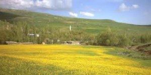Ağrı Taşlıçay İkiyamaç Köyü