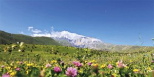 Ağrı Taşlıçay Balçiçek Köyü