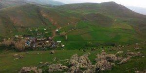 Ağrı Taşlıçay Güneysöğüt Köyü