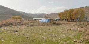 Ağrı Tutak Bulutpınar Köyü