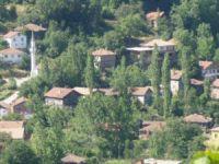 Kastamonu Baltacı Köyü
