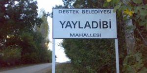 Amasya Taşova Yayladibi Köyü