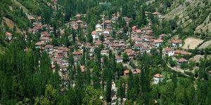 Amasya Taşova Yaylasaray Köyü