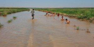 Şanlıurfa'da çocuklar asfaltta yüzüyor