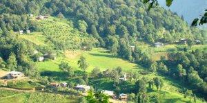 Artvin Borçka Kayalar Köyü