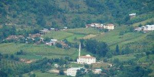 Artvin Borçka Kaynarca Köyü