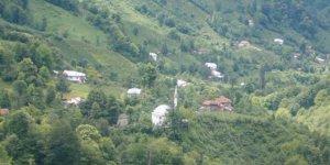 Artvin Borçka Şerefiye Köyü