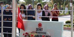 Öğrencilerden Ömer Halisdemir'in kabir ziyaretleri programına yoğun ilgi