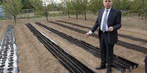 Safran'da üretim ve kalite arttırma hedefleri