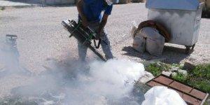 Korkuteli'de sinekle mücadele sürüyor