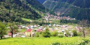 Çaykara Çambaşı Köyü