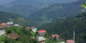 Dernekpazarı Günebakan Köyü