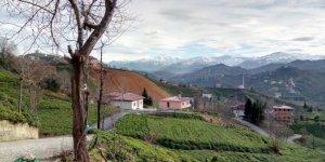 Of Doğançay Köyü
