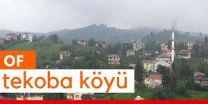 Of Tekoba Köyü