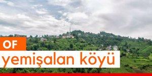 Of Yemişalan Köyü