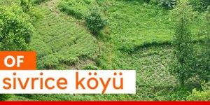 Of Sivrice Köyü