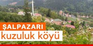 Şalpazarı Kuzuluk Köyü