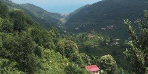 Yomra Şanlı Köyü