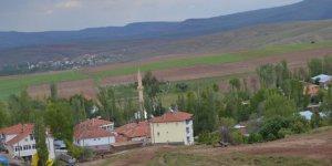 Altınyayla Güzeloğlan Köyü
