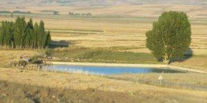 Altınyayla Yassıpınar Köyü