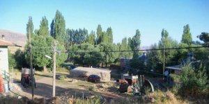 Divriği Yeşilyayla Köyü