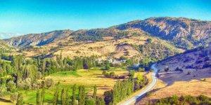 Doğanşar Kozlu Köyü